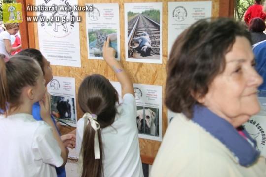A Felelős Állattartásért és a Környezettudatosságért is dolgozunk
