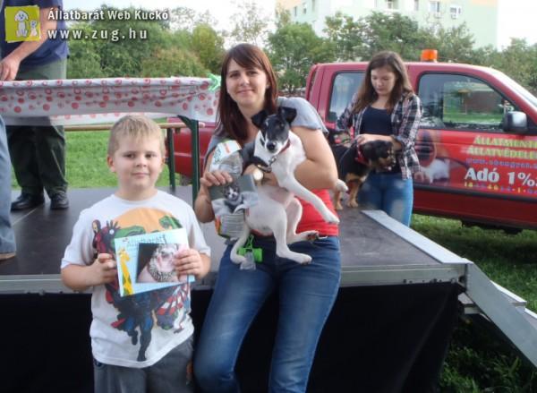 Zsűriztük a lakótelepi kutyusokat - kutyaszépségversenyen voltunk