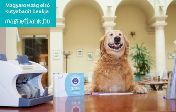 Kutyabarát közösségi bank az ügyfeleivel együtt segít a rászorulókon