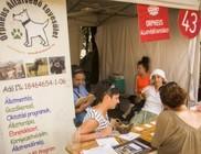 Állatvédők a Sziget 2013 Fesztiválon