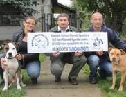 Állatmentő tevékenység támogatása