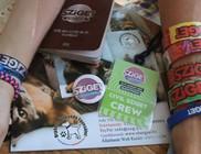Állatvédők a Sziget 2015 Fesztiválon