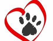 Állatbarát Plakátpályázat 2018 - értékes díjazással