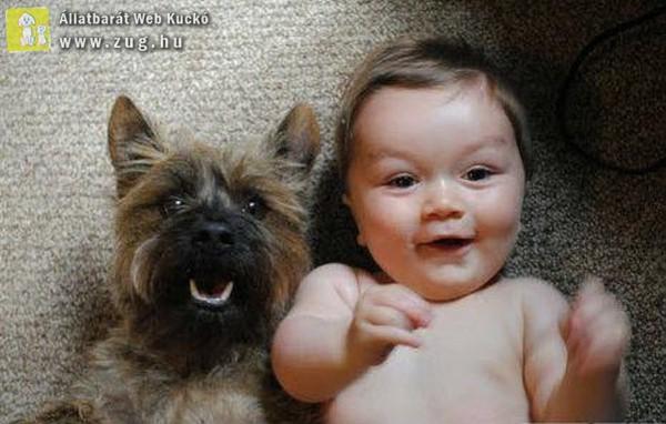 Baba-kutya selfie