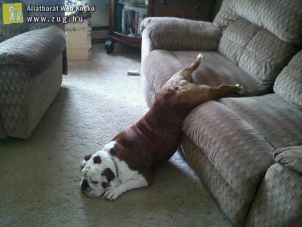 Így is lehet pihenni