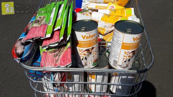 Kutyatáp adomány, állatvédő támogatás