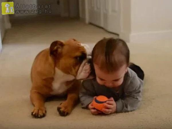 Baba-kutyus páros