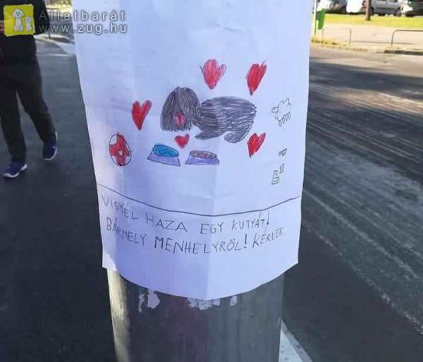 Kutya örökbefogadás - plakát
