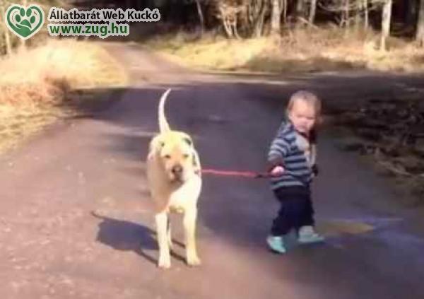 Séta a kutyával