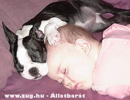 Pszt, alszunk!