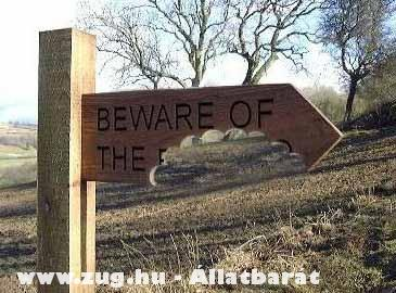 Beware of the...?!