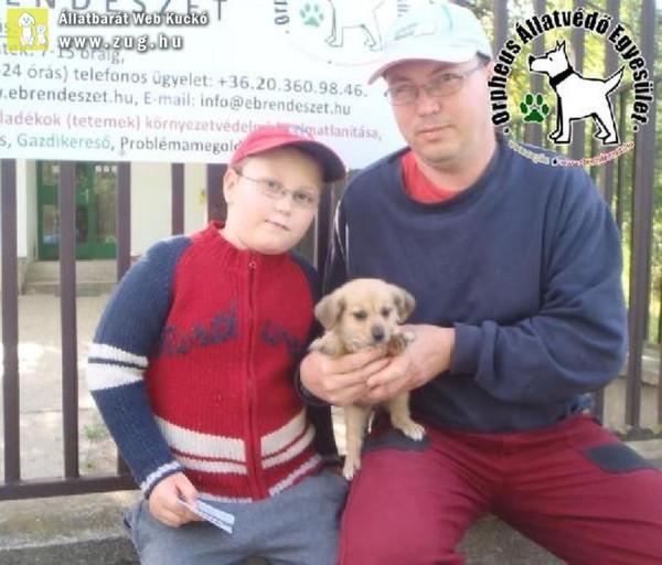 Állatmentés: Szerető Gazdinál Lasszó!