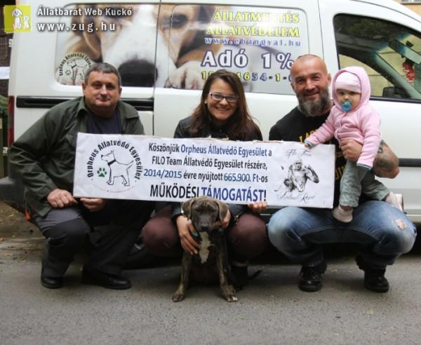 Állatvédő Egyesületet, a Filo Team-ot támogattunk