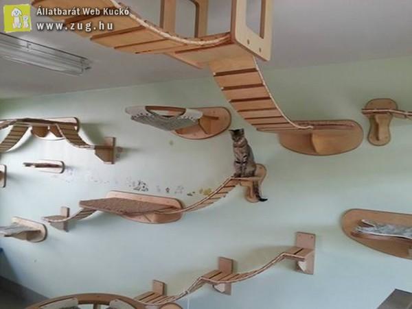 Cicajáték, macskajátszóház