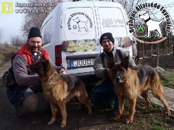 Kutyamentés: Alíz és Rexa szerető Gazdihoz kerültek!