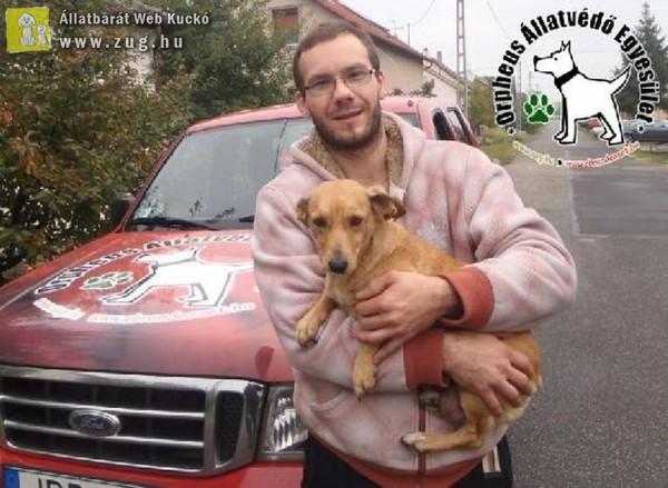 Kutyamentés: Megmentettük Fücsi kutyust!