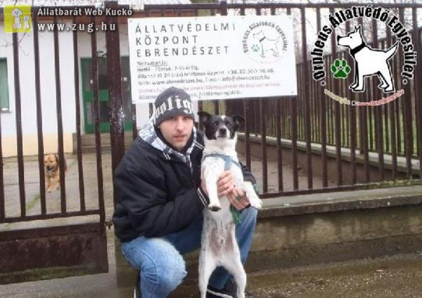 Kutyamentés: Rudi Gazdival!