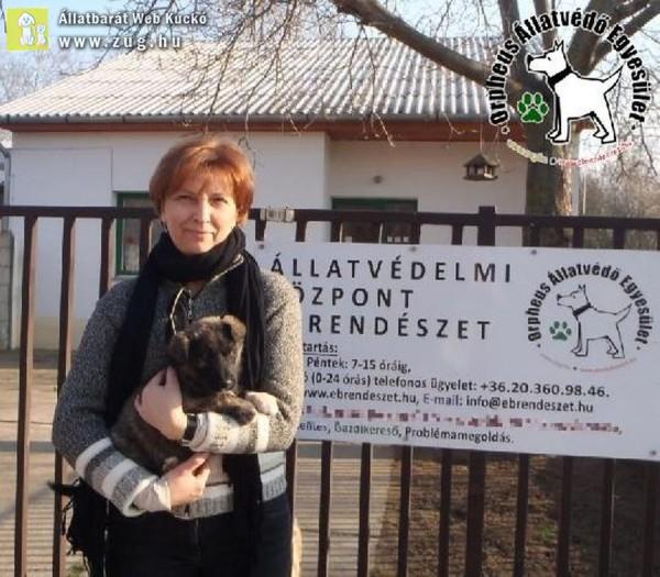 Kutyamentés: Szerető Gazdinál Csatika!