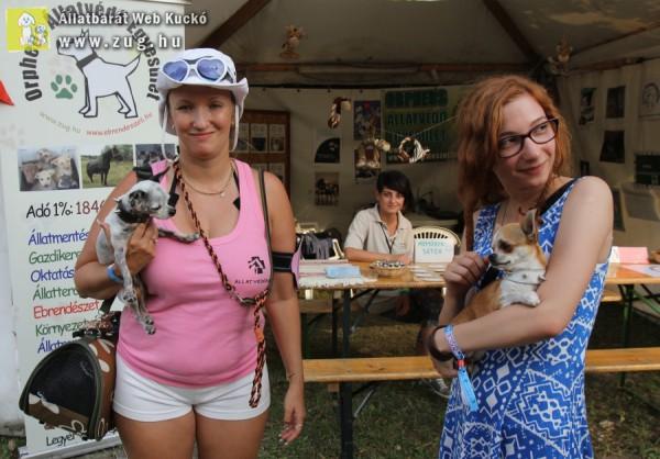 Sziget 2014 - Állatvédők a Sziget Fesztiválon