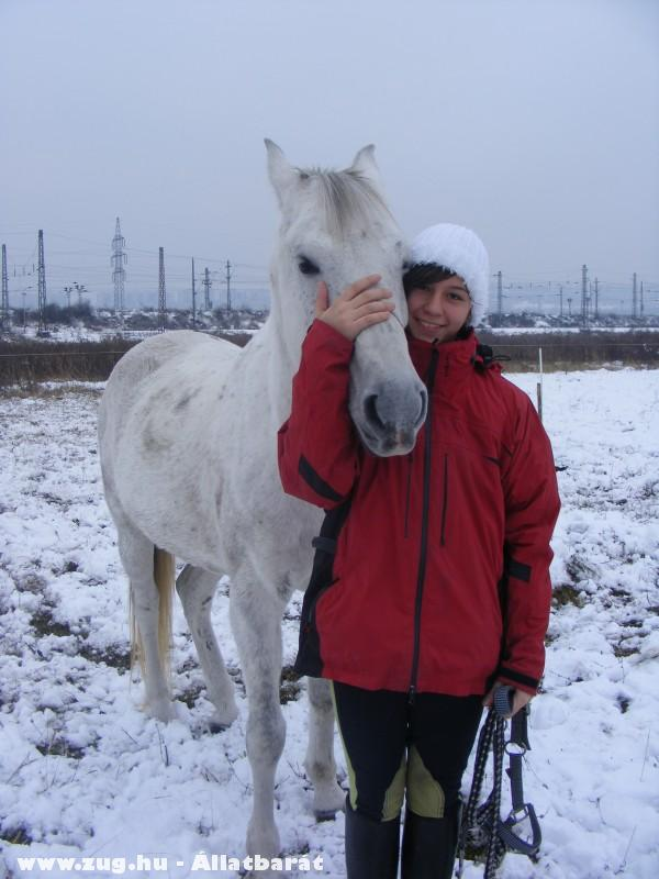 Virág lovam és én