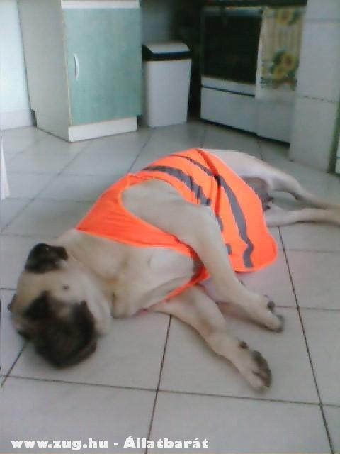 Munka után édes pihenés:)