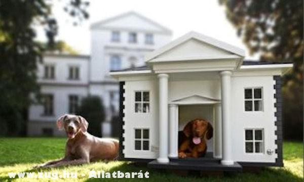 Luxus kutyaház, kutyapalota