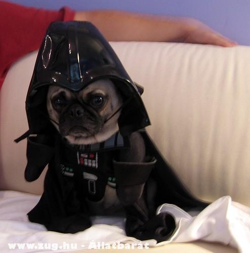 Én vagyok az apád????