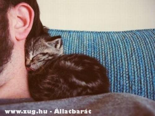 Gazdi és a cicája