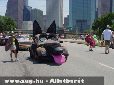 Kutya car