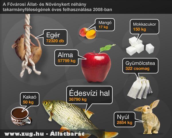 A Fõvárosi Állatkert éves fogyasztása