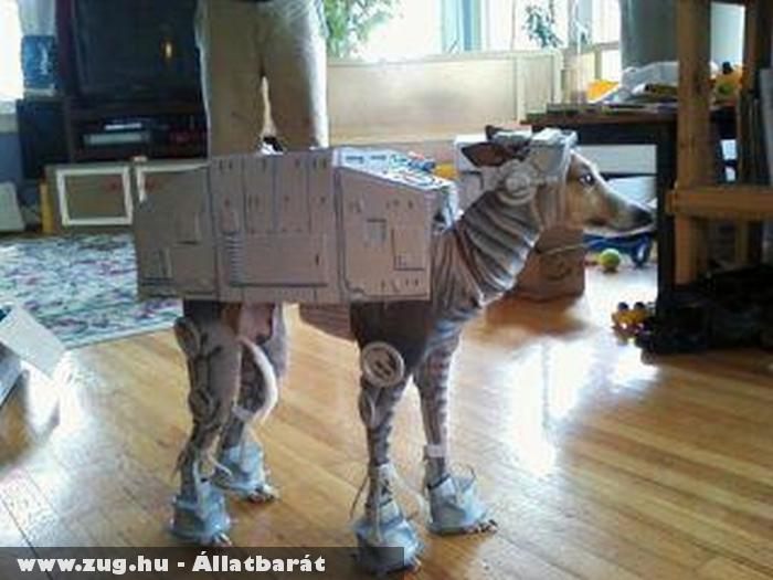 Star Wars Dog