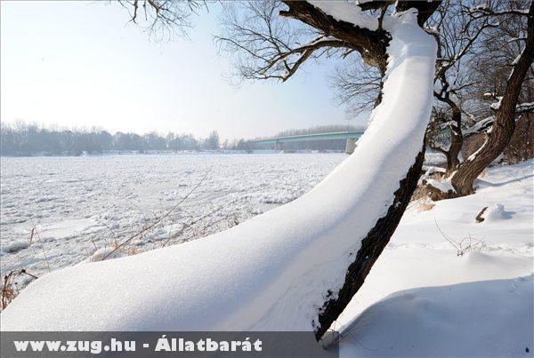 Hideg idõ, Befagyott a Dráva