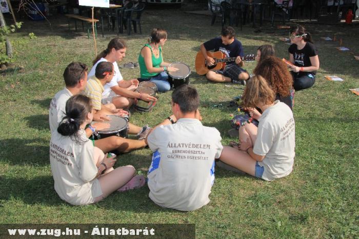 Állati zene-bona a Sziget 2012 fesztiválon