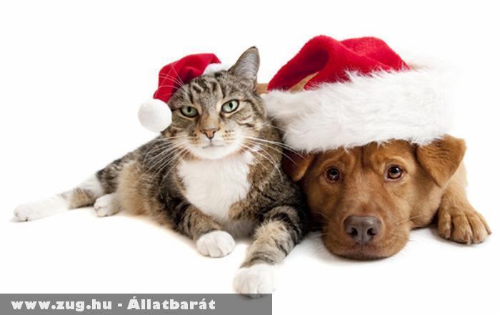 Karácsonyi békesség