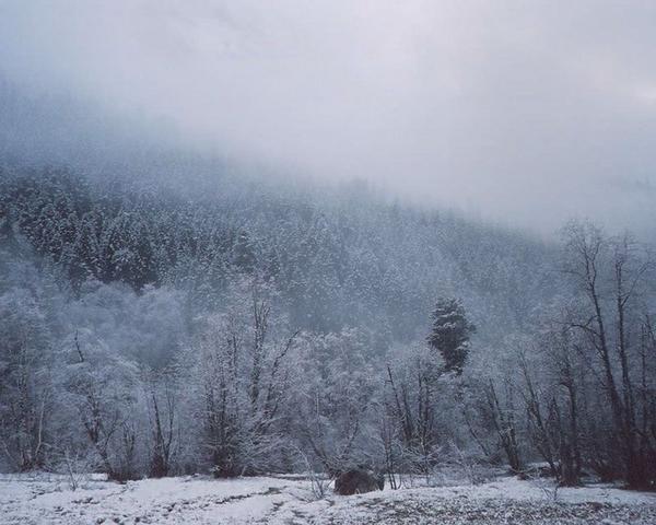 Téli köd