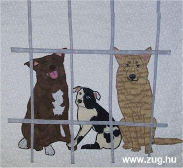 Kóbor kutyák rácsokközt (Manka képe)