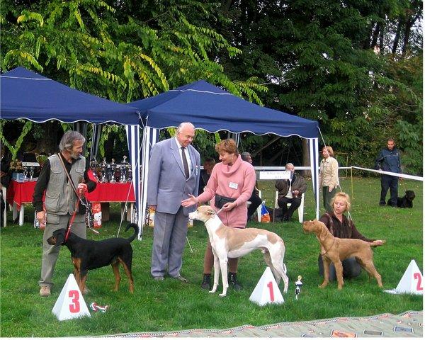 Vadász - kutyakiállítás3