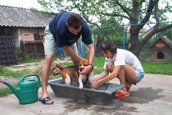 Bobi fürdik :)