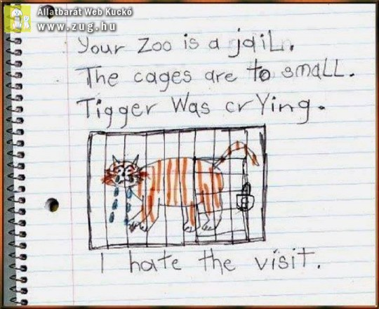 Állatkert - zoo