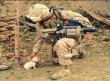 A harcot szívvel, és ne fegyverrel vívd - állatmentés!