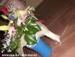A kisasszony szereti a virágokat (megenni)