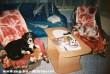 Az én kiskutyáim Bettike és Lady