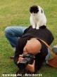 A fõnök és a fényképész