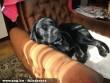 A kedvenc fotelem :)