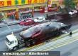 Brutális bálna szállítás