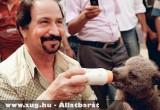 Medvebocs etetés Bagdadban