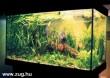 Akvárium egy panelban