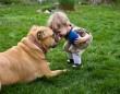 Misi megértő az érdeklődő kisgyerekekkel :)