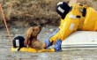 Zajló jégből megmentett kutyus