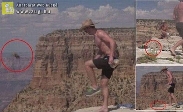 Hajtóvadászat indult a férfi után, aki a Grand Canyonba rúgta a mókust